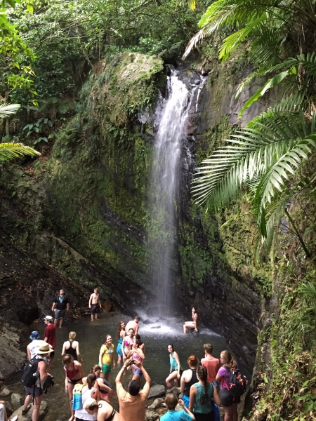 El Yunque National Forest - Waterfall